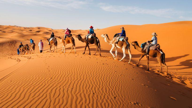 1576602858 15 surprising curiosities about the Sahara desert