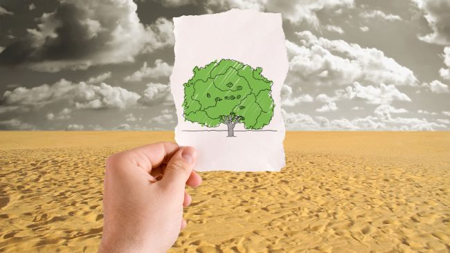 Desertification and drought in Africa