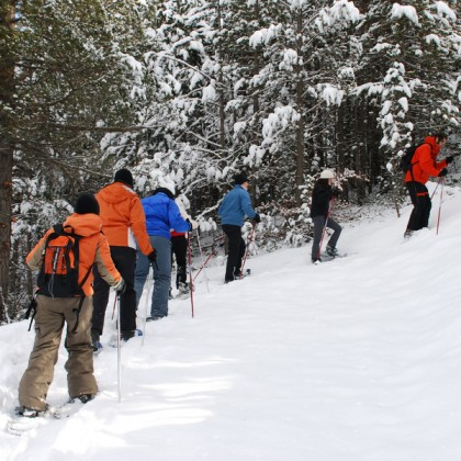 practice with snowshoes