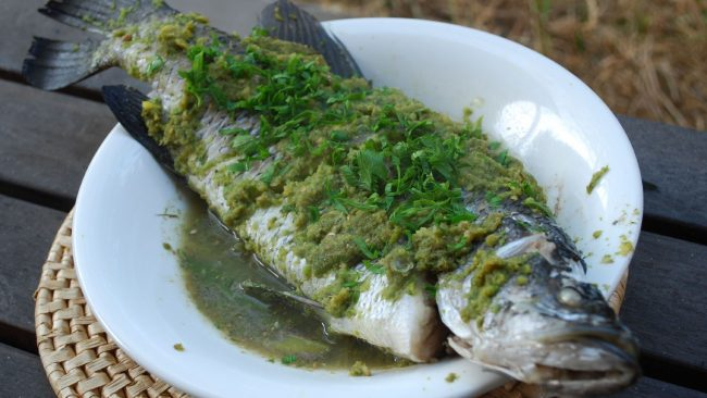 Barramundi: a fish of up to 60 kilos
