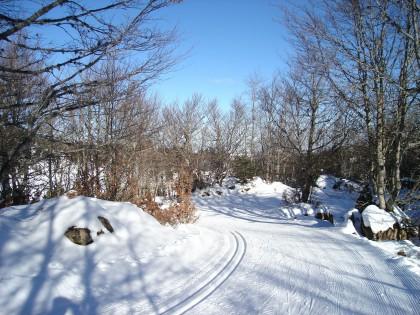 Cross-country ski circuits in Navarra