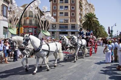 Horse cars in Malaga