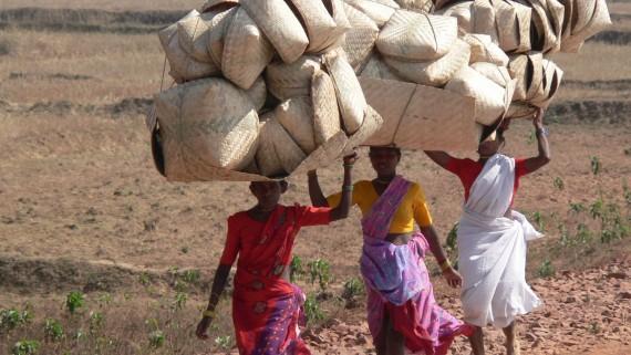 Adivasis d'Orissa, Inde