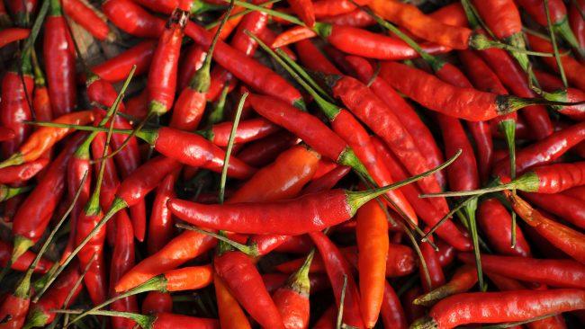 Chili pepper, traditional food in Ecuador