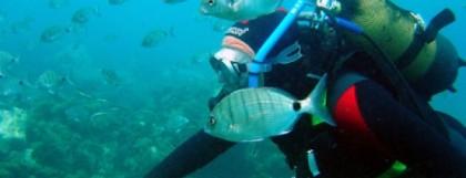 Centres de plongée à Malaga