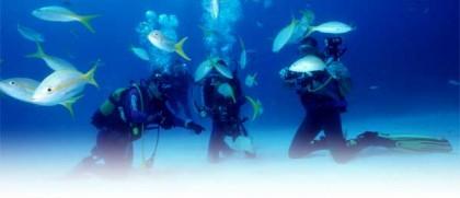 Dive in Cuba