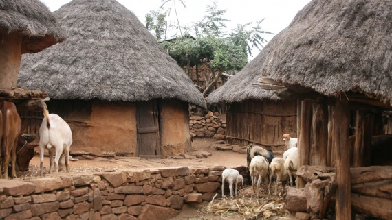 Typical houses of the Konso Community (Ethiopia)