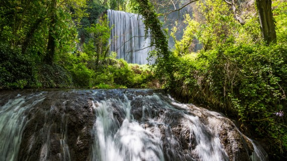 Natural Park of the Monasterio de Piedra, Zaragoza