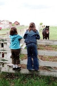 Rural tourism with children admiring