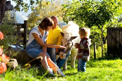 Rural tourism with children with animals