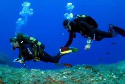 Dive in Formentera