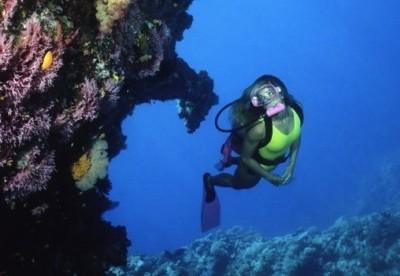 Diving in Alicante