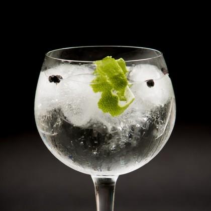 Gin Tonic tastings in Mallorca