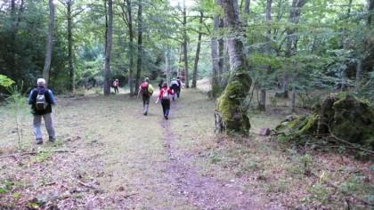 Trekking in Burgos