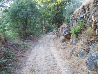 Trekking in Vigo