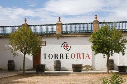 Visit Torre Oria winery