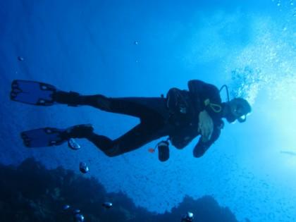 Plongeur aérien au récif d'Elphinstone, Mer Rouge, Egypte #SCUBA