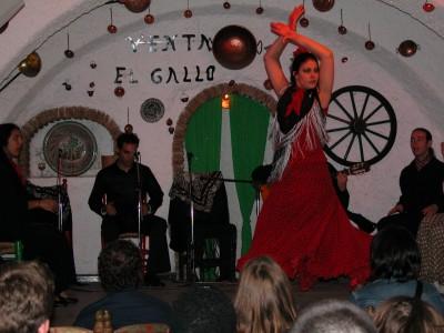 Gypsy Flamenco Party