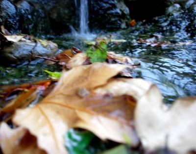 Granada autumn