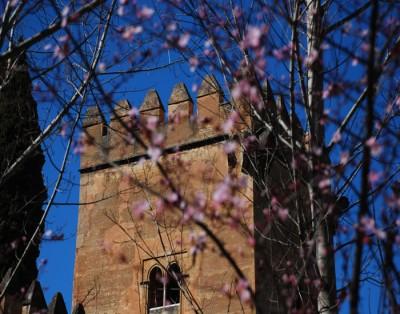 Spring in Granada