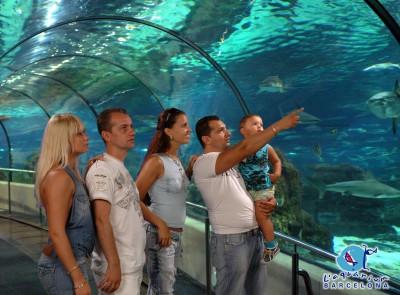 Oceanarium tunnel