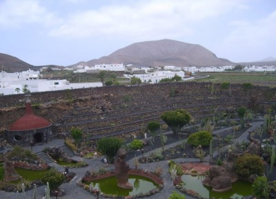 General view of the Cactus Garden
