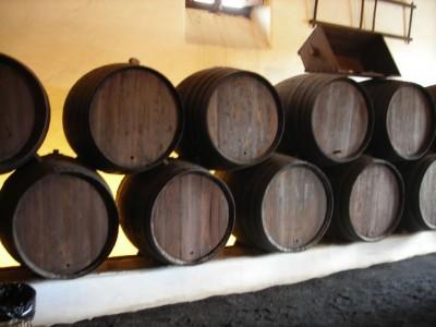 La Geria winery