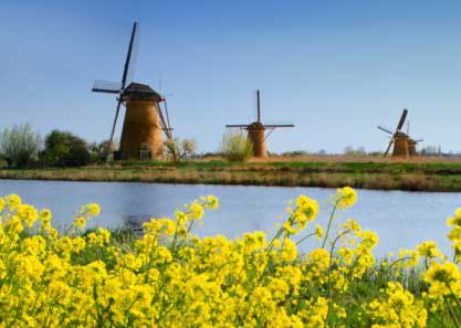 Windmills in spring