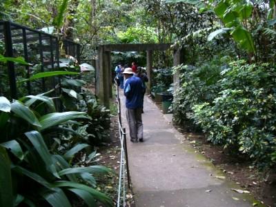 Walk through the San Jose Zoo