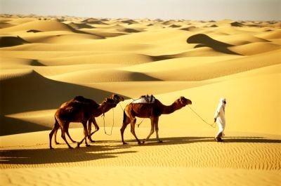 Embassy of Algeria desert