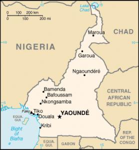 Cameroon Borders Map