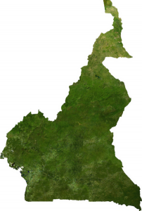 Cameroon satellite map.