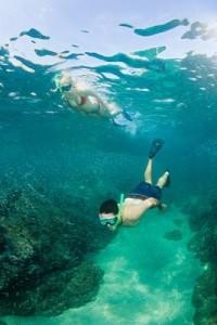 diving Alicante