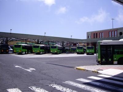 Bus Tenerife