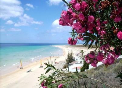 Climate Fuerteventura