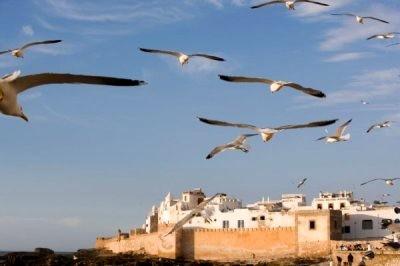 Essaouira city of Morocco
