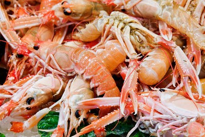 Galician seafood