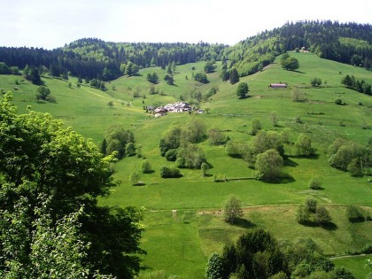 Green tourism Black Forest