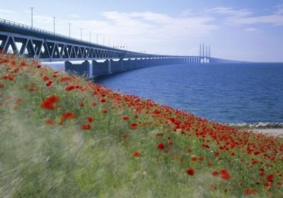 International Transport Sweden