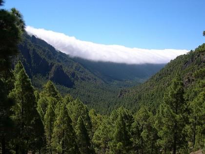 La Palma tourist guide