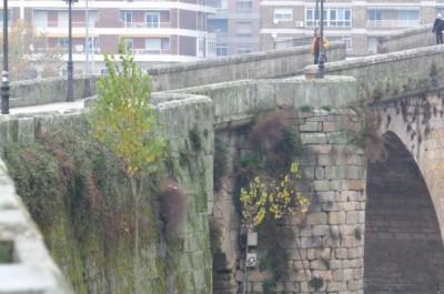 Roman Bridge Orense