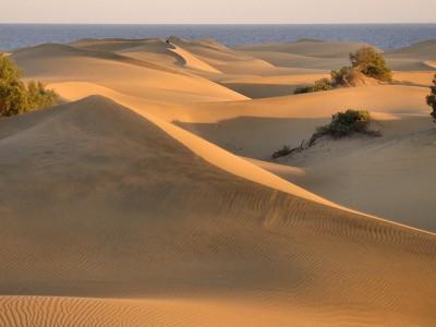 The Dunes of Maspalomas Gran Canaria